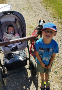 Saltram Walk